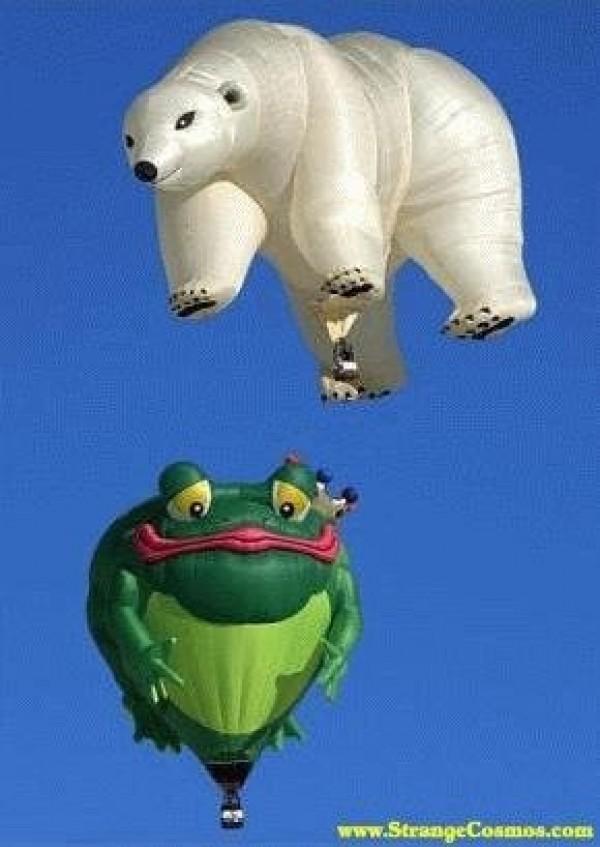 L'ours et la grenouille