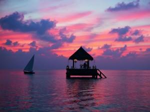 Voter pour Dans ce bungalow flottant aux Maldives