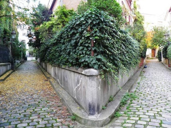 Balade champêtre  square des Peupliers (13ème)
