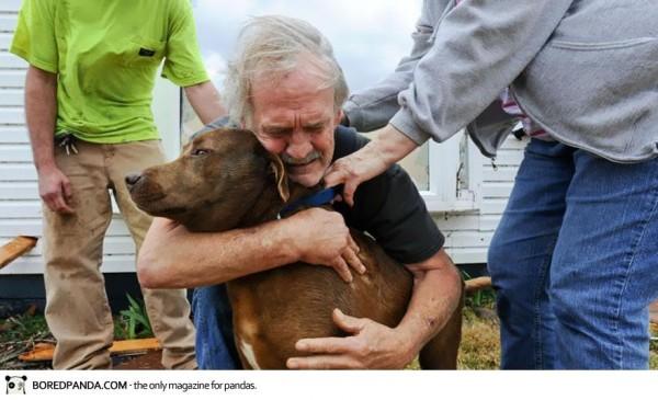 2012, Greg Cook retrouve son chien sous les décombre de sa maison apres une tornade