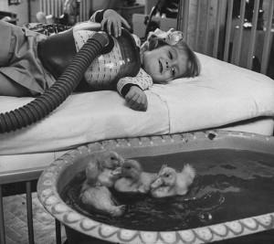 Voter pour 1956 : Les animaux font part des traitements médicaux