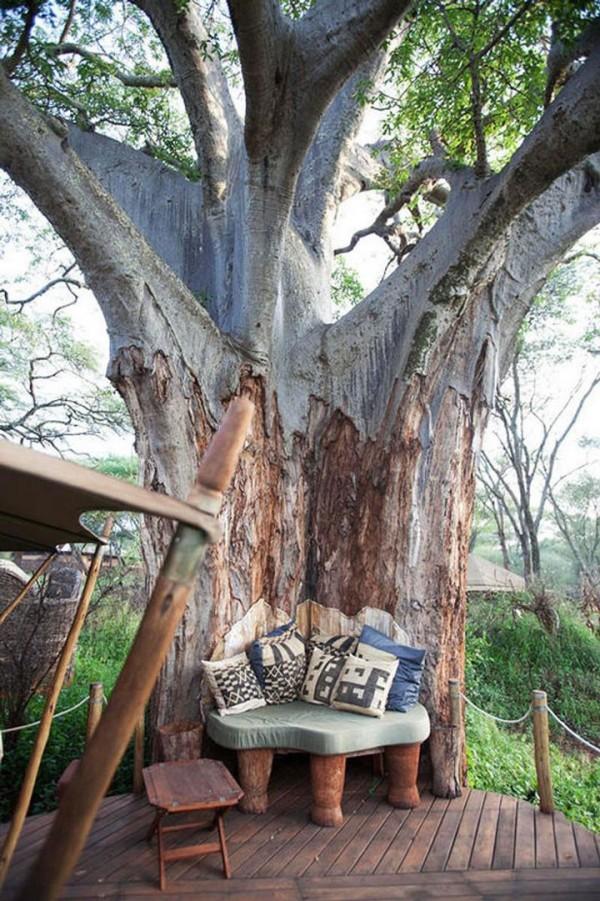 Dans un alcôve parfaitement intégrée à un arbre