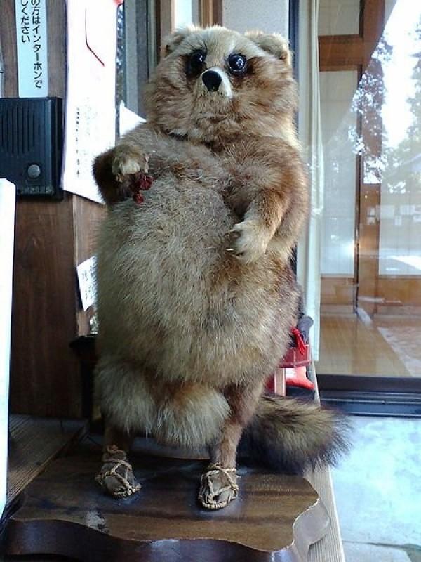 La mami marmotte