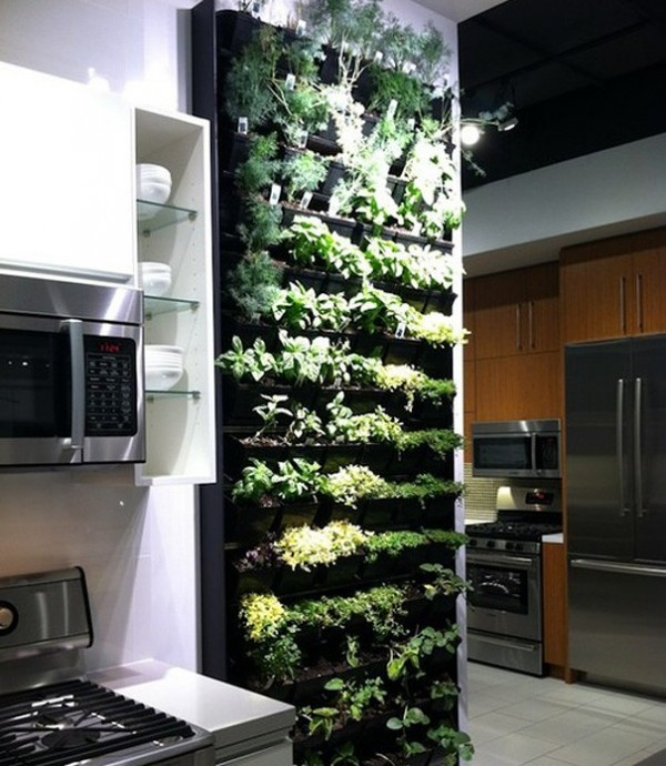 Le jardin vertical pour cuisine