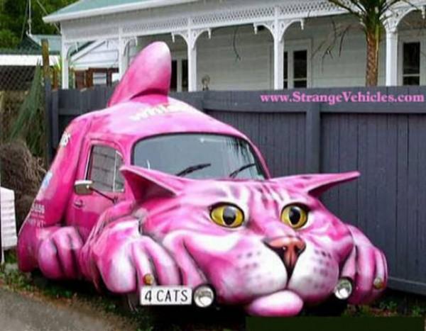 Drôle de voiture chat