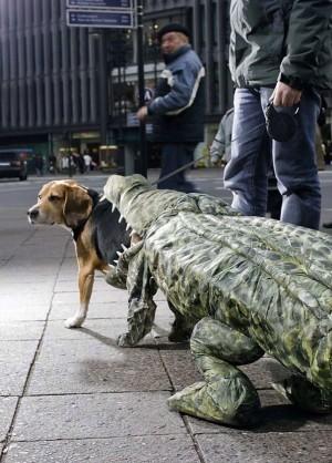 Voter pour Chien Crocodile