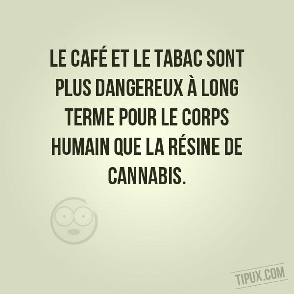 Le café et le tabac sont plus dangereux pour le corps que la résine de cannabis