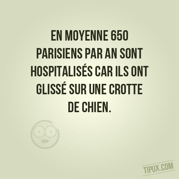 En moyenne 650 parisiens par an sont hospitalisés car ils ont glissé sur une crotte de chien.