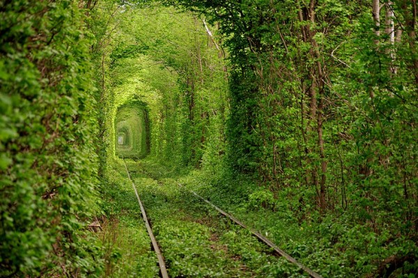 Ukraine - Tunnel de l'amour