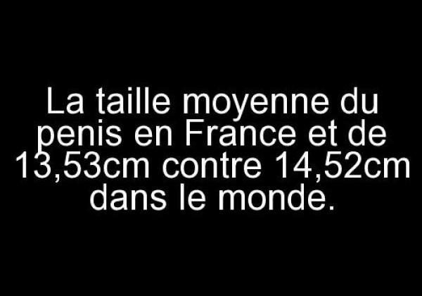 La taille moyenne du penis en France