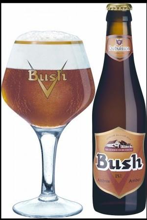 Voter pour Bush ambrée