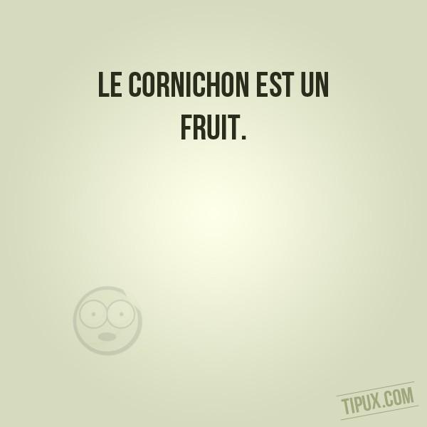 Le cornichon est un fruit.