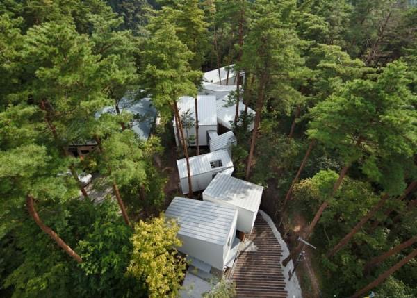 Une maison qui serpente au milieu des arbres au Japon