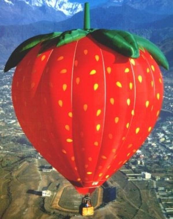 Belle fraise