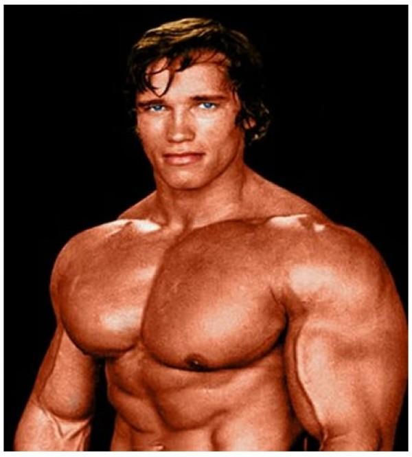 Arnold Schwarzenegger jeune