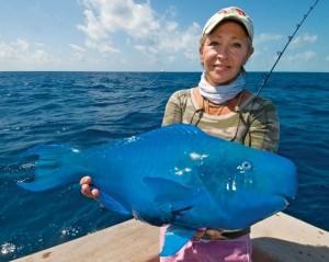 Voter pour Le poisson clown bleu